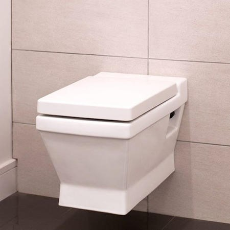 Turin Wall Hung Toilet and Soft Close Seat