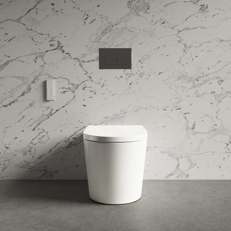 Back to Wall Bidet Toilet Combo- Built in Dryer & Spray-Purificare