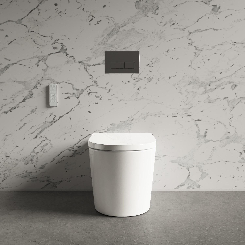 Marvelous Back To Wall Bidet Toilet Combo Built In Dryer Spray Purificare Ibusinesslaw Wood Chair Design Ideas Ibusinesslaworg