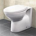 Tampa Toilet