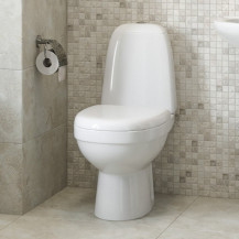 Cova Toilet and Seat with Pan Connector