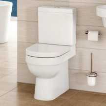 Hallmoor Toilet and Seat