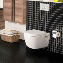 Aviso Wall Hung Toilet inc Seat
