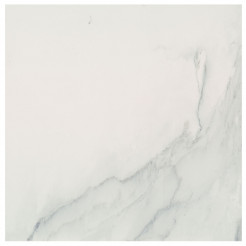 Oporto Carrara Glazed Porcelain Wall/Floor Tile