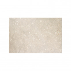 Fossil Grey Honed Wall/Floor Tile