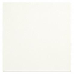 Rays White Wall/Floor Tile